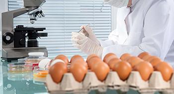 Investigacao-de-Surtos-de-Origem-Alimentar
