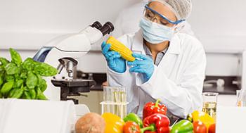 Principio-da-Educacao-Alimentar